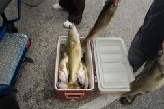 fishing012