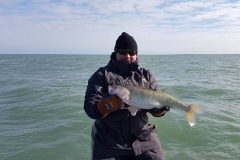 blue-dolphin-walleye-charter-customer-11