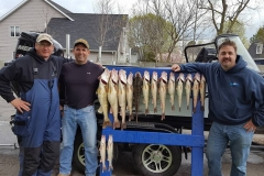 blue-dolphin-walleye-charter-customer-46