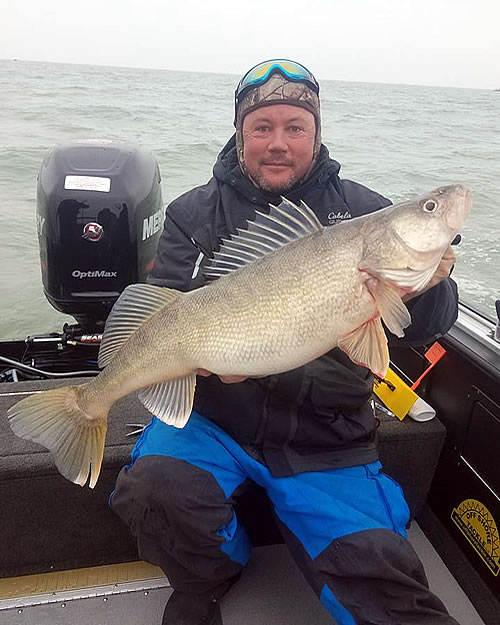 Blue Dolphin Walleye - Lake Erie Fishing Charters