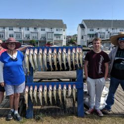 Lake Erie Walleye Charter - August 2019