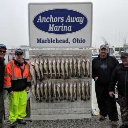 Lake Erie Walleye 5/2019